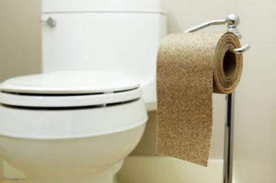 Жесткая туалетная бумага
