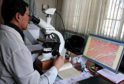 Анализ биопсии