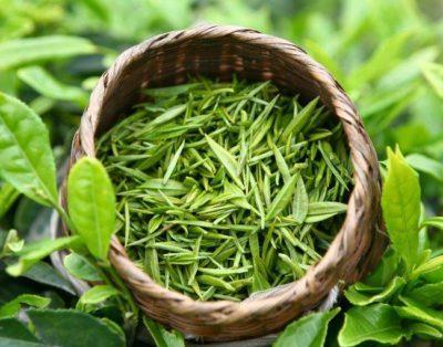 Компрессы с зеленым чаем