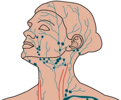 Лимфатический узел