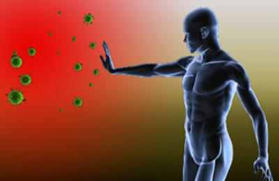 Улучшение иммунитета