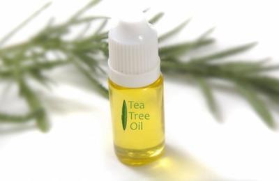 свойства масла чайного дерева