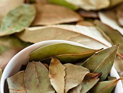 Листья лаврового листа