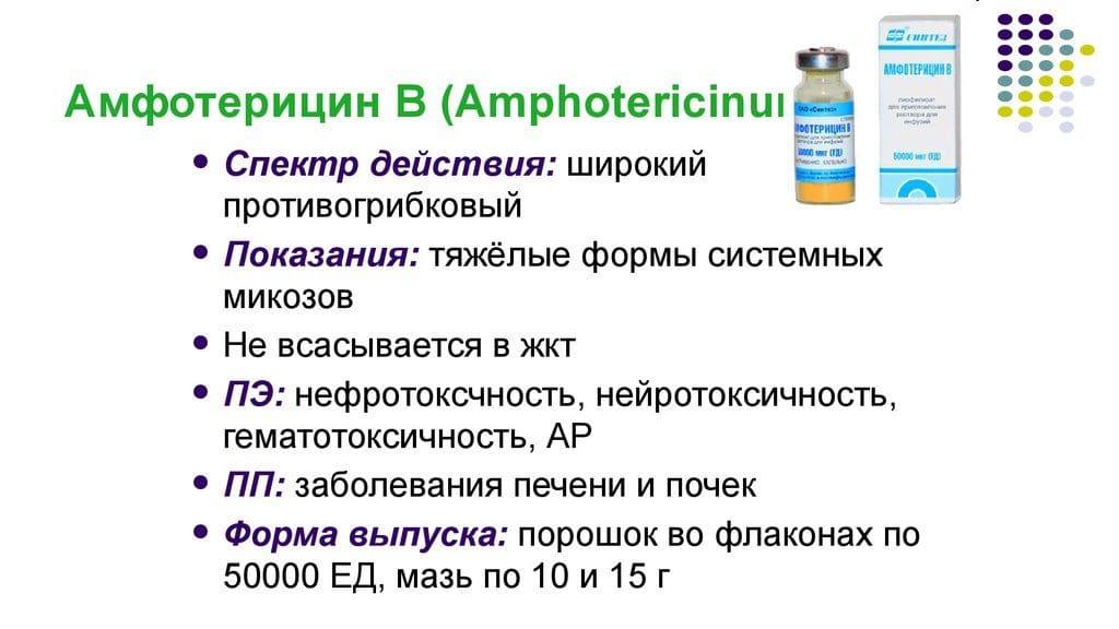 Амфотерицин В