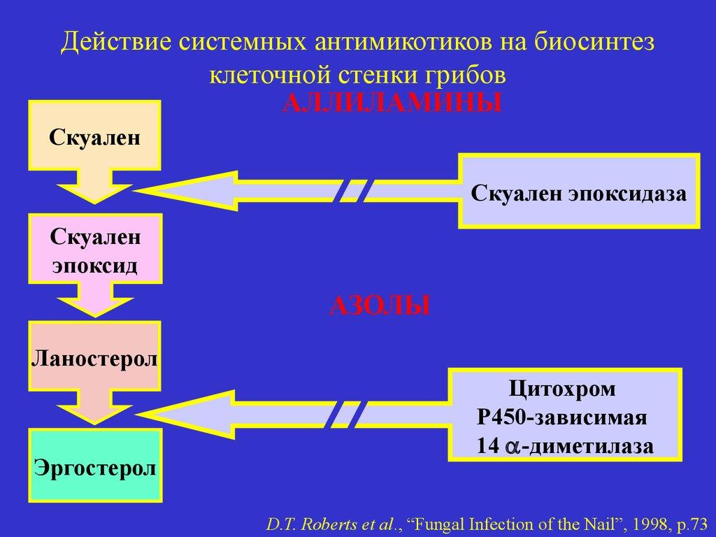 Действие системных антимикотиков